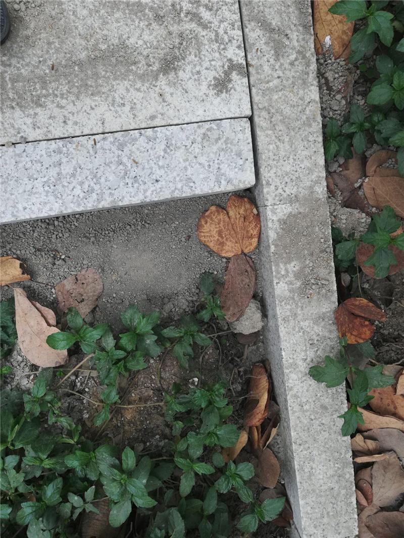 路沿石项目案例