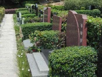【标准墓】