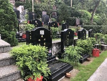 【标准墓】罗浮山标准墓