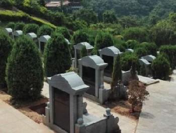 <b>标准墓区</b>